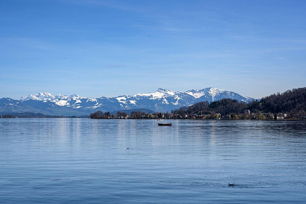Blick über den Zürichsee